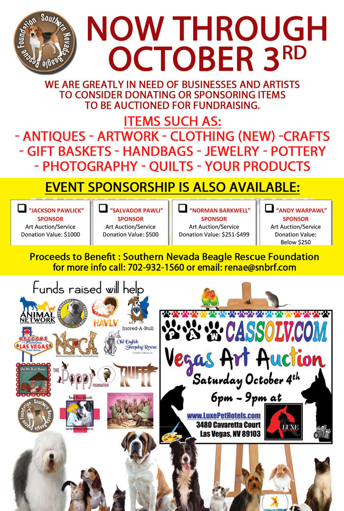 Snbrf Pawcasso Donation Flyer