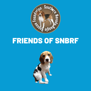 frieds of snbrf