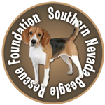Dedicated to Beagle Rescue in Southern Nevada