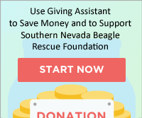 Use Giving Assistant
